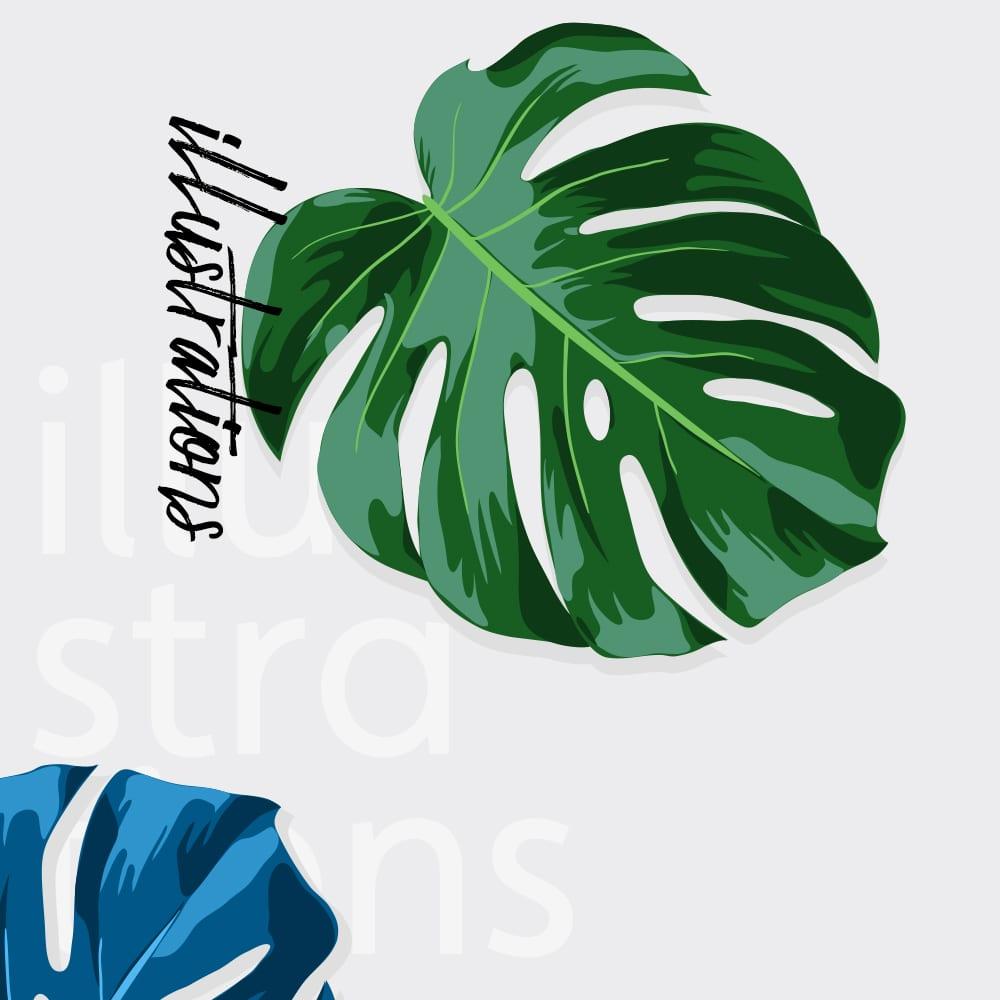 Creative 7 Designs Illustration Portfolio